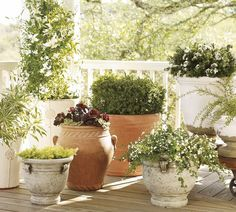 Like the pots. Want to do something on the deck this summer...