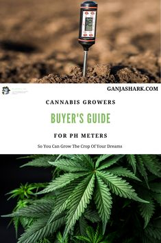 Hydroponic gardening and soil gardening require you to know the Ph levels. So, to ensure a good harvest you should know the importance of Ph levels. Check this article out now! Indoor Hydroponic Gardening, Gardening Tips, Marijuana Plants, Cannabis Plant, Hydroponics System, Aquaponics, Growing Weed Indoors, Best Led Grow Lights, Ph Levels