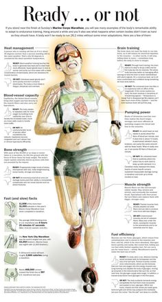 Originally printed by the Washington Post...details some very interesting facts about what your body endures during a marathon when you are well-trained and not-so-well trained! Having run the Marine Corps Marathon, I like this!