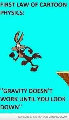 Cartoon Physics