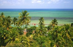 A mind blowingly beautiful aquamarine beach in Olinda, Brasil