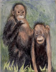 Michal E Feder, Titled, Buddies, Two Monkeys Mixed Media Art on Paper Signed By Colorado Artist, Unframed
