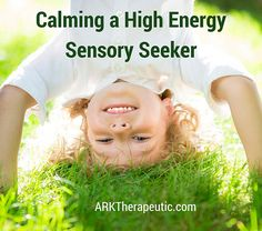 ARK Therapeutic: Calming a High Energy Sensory Seeker. Pinned by SOS Inc. Resources. Follow all our boards at pinterest.com/sostherapy/ for therapy resources.
