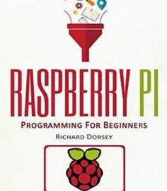 Raspberry Pi: Programming For Beginners PDF