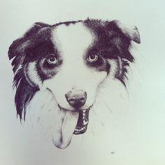 #collie #dog #illustration #sheepdog