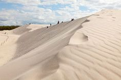 Sand dunes in Slowinski National Park, Poland... leading down to the Baltic Sea.