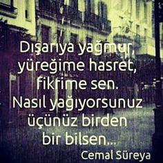 Cemal Süreyya Periodic Table, Poems, Writing, Love, Amor, Periodic Table Chart, Periotic Table, Poetry, Verses