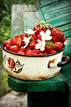 soon strawberries in the garden