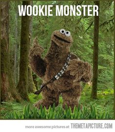 wookie monster .. I might have already pinned it but it makes me chuckle every time I see it.
