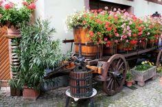 Google Afbeeldingen resultaat voor http://files.idealhomegarden.com/files/commons/decorating_with_wine_barrels_1344559690.jpg