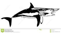 Mako shark clipart - ClipartFox