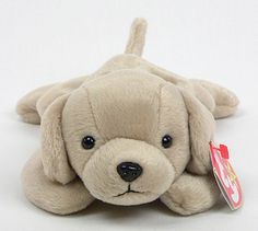 My dog Sox is going to be Fetch for Halloween this year   Fetch TY Beanie Baby