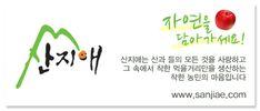사과 그림만 그리는 작가? 윤병락의 사과 그림 : 네이버 블로그 Fruit