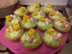 Easter spring chicks cupcakes