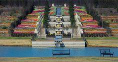 Tulsa Botanic Gardens is located just northwest of downtown Tulsa at 3900 Tulsa Botanic Drive in Osage County.