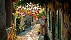 Cobblestone street in Vicenza, Italy.