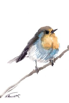 Robin painting 12 x 9 in original watercolor robin by ORIGINALONLY