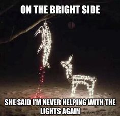 Never helping with the Christmas lights again Funny christmas meme funny pic haha