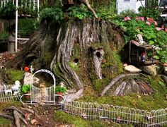"""Barbara Stanley      """"This old stump is planted with moss, ivy and impatiens as part of my fairy gardens.  Fairy gardening is all fun and no sweat…unlike human gardening! The creative process is so much fun. Once you start thinking about the world from a fairy's perspective, you 'll start seeing fairy garden accessories everywhere you go…thrift stores, dollar stores, craft stores, medicine cabinets, trash cans…."""""""