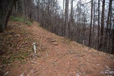 【聖山 坊平】登山百景-ここから山道