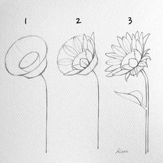 How to draw flowers step by step for beginners Drawing Beginners . How to draw flowers step by step for beginners Drawing Beginners Draw Drawing flowers - Easy Pencil Drawings, Easy Flower Drawings, Flower Drawing Tutorials, Art Drawings Sketches, Doodle Drawings, Drawing Ideas, Disney Drawings, Easy Nature Drawings, Tattoo Sketches