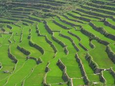 Ancient 2,000 year old rice terraces in the Philippines, it covers an area of 20,000 square-kilometers or 2,000,000 hectares.