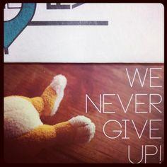 Porta Venezia in design: We never give up #milandesignweek