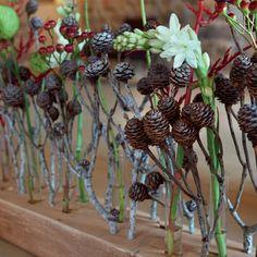 BLOOM's / Floristikideen: kreative Ideen für den Design-Floristen