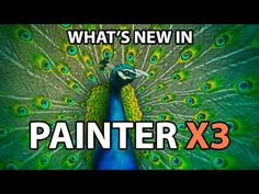 Corel Painter X3 New Features