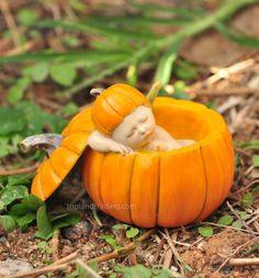 Sleeping Fairy Baby In Orange Pumpkin