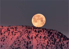 """Worm Moon Setting on the Sierras, March 2017, Mike Herron Photography  """"With how amazing the Worm Moon looked rising last night, I knew I wanted to capture a shot of it setting this morning,"""" wrote Mike Herron on his Facebook page. """"I set my alarm, and was thinking about going somewhere special for a shot. When I woke up, I realized I didn't need to make any special trips, I could see this amazing moon right out my bedroom window, so I just got my camera out, and went outside to watch it…"""