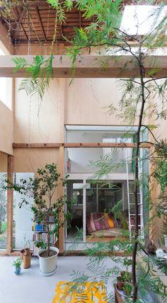 房子一變三,通風透光也把綠地攬進家
