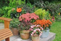 Garden Yard Ideas, Rustic Gardens, Container Gardening, Hibiscus, Planters, Home Decor, Google, Landscaping, Diy Crafts