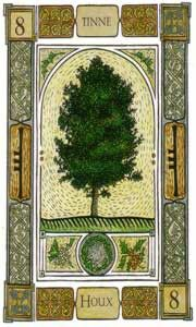 Holly: Ogham: Tinne. Victory in battle;      By being fair and balanced you will obtain victory over your adversaries. However,Avoid all direct conflict; you will win the battle practising justice in your words, aggressiveness is a strong sign weakness.
