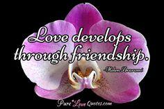 Love develops through friendship. #purelovequotes