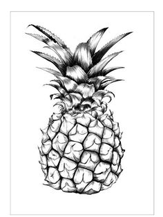 my new poster by Ini Neuman - Ananas Poster Pineapple Sketch, Pineapple Tattoo, Pineapple Art, Pineapple Painting, Pineapple Illustration, Botanical Illustration, Illustration Art, Tattoo Dotwork, Pineapple Wallpaper