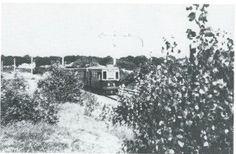 31 december is de elektrische tram in gebruik genomen, hier rijdend door het duin. Op 2 januari 1949 maakte de tam zijn laatste rit door Bennebroek