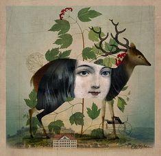 The Untold Story, Catrin Welz-Stein