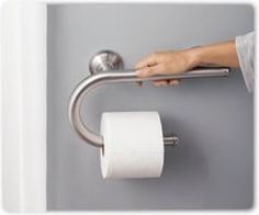 Awesome Moen toilet Paper Holder Grab Bar