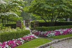 This is a very well put together driveway, edging, plantings, hedges and entryway. The total landscape