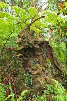 Forest/tree spirit amongst the greenery, he looks like a cunning fellow. Dream Garden, Garden Art, Garden Design, Weird Trees, Tree Carving, Green Man, Outdoor Art, Land Art, Tree Art
