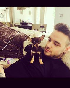 Ese bebe de cachorro q ven allí es él cachorrito de cheryl la novia de liam ...liam es un tierno chico