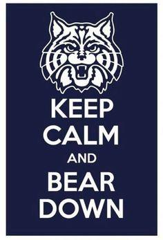 BearDown Wildcats!!!