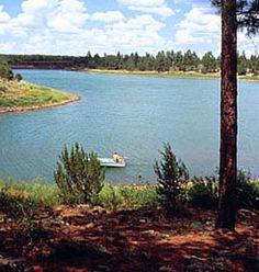 Fool Hollow Lake, Show Low AZ