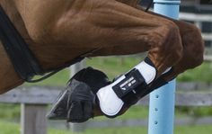 £1,000 up for grabs in new RoR showjumping championship - Horse & Hound http://www.horseandhound.co.uk/news/ror-showjumping-476751