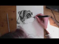 How to Draw a Realistic Dog like an artist! Step by Step Art Ed Central loves Colored Pencil Tutorial, Colored Pencil Techniques, Painting Videos, Painting & Drawing, Drawing Fur, Animal Drawings, Art Drawings, Realistic Drawings, Drawing Sketches