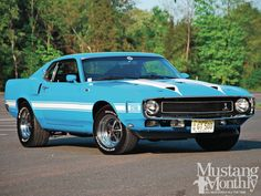 1969 Ford Mustang Shelby Maintenance/restoration of old/vintage vehicles: the material for new cogs/casters/gears/pads could be cast polyamide which I (Cast polyamide) can produce. My contact: tatjana.alic@windowslive.com