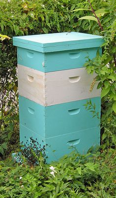 Seven types of beekeeping advice to avoid