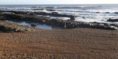 Our local beach at low tide: shingle, rocks and waves. South East England, East Sussex, Rocks, Waves, Beach, Outdoor, Outdoors, The Beach, Beaches
