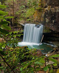 Dog Slaughter Falls, Daniel Boone National Forest, Corbin, KY